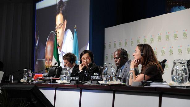 COP16: Klimaet kom langt væk i Cancún