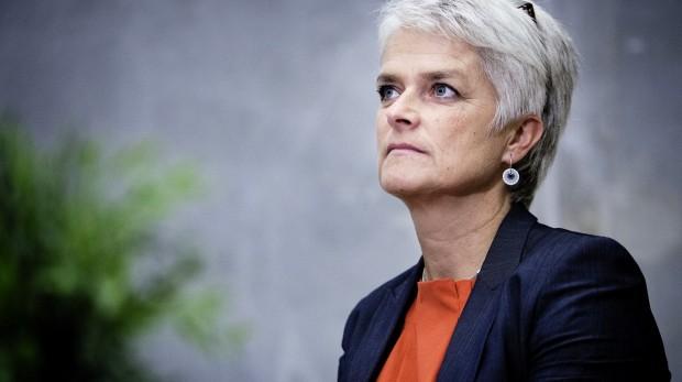 Vilhelmsen:SF får ikke mere indflydelse med mig som formand