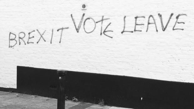 Andrew Moravcsik: Ligegyldigt hvad resultatet af afstemningen var blevet, kommer der ikke et Brexit. Punktum.