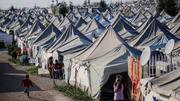 Martin Lemberg-Pedersen: Flere lande vil følge Trump og trække sig fra internationalt flygtningesamarbejde