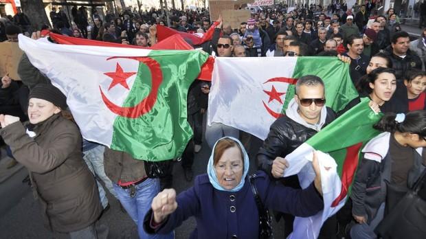 Algeriet: Derfor går oprøret så langsomt